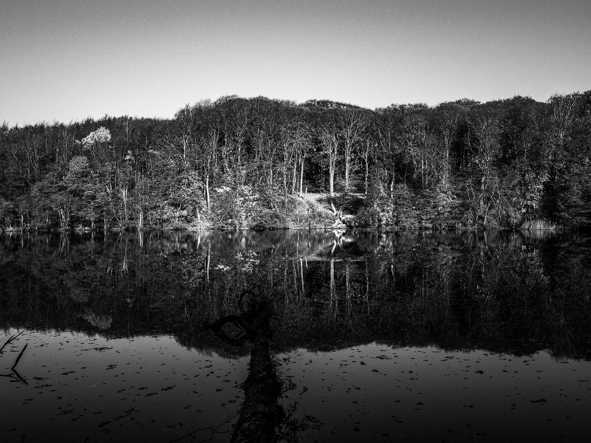 Nationalpark-Jasmund-WB-20181107-016.jpg