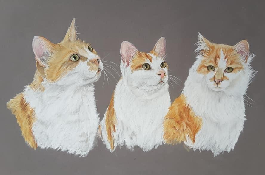 Cats_01_edited.jpg