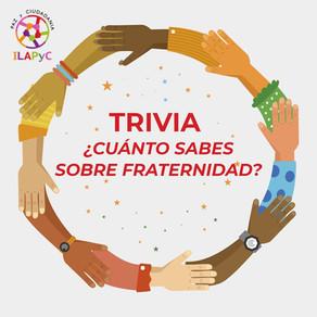¿Cuánto sabes sobre el Día Internacional de la Fraternidad Humana?