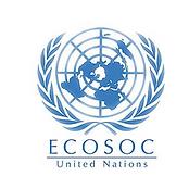LOGO ECOSOC.png