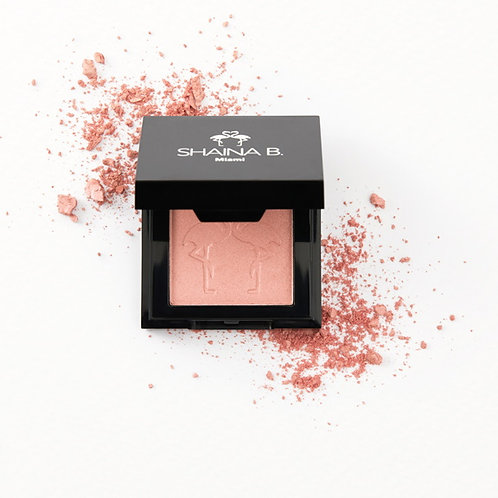 Shaina B Miami Highlighter
