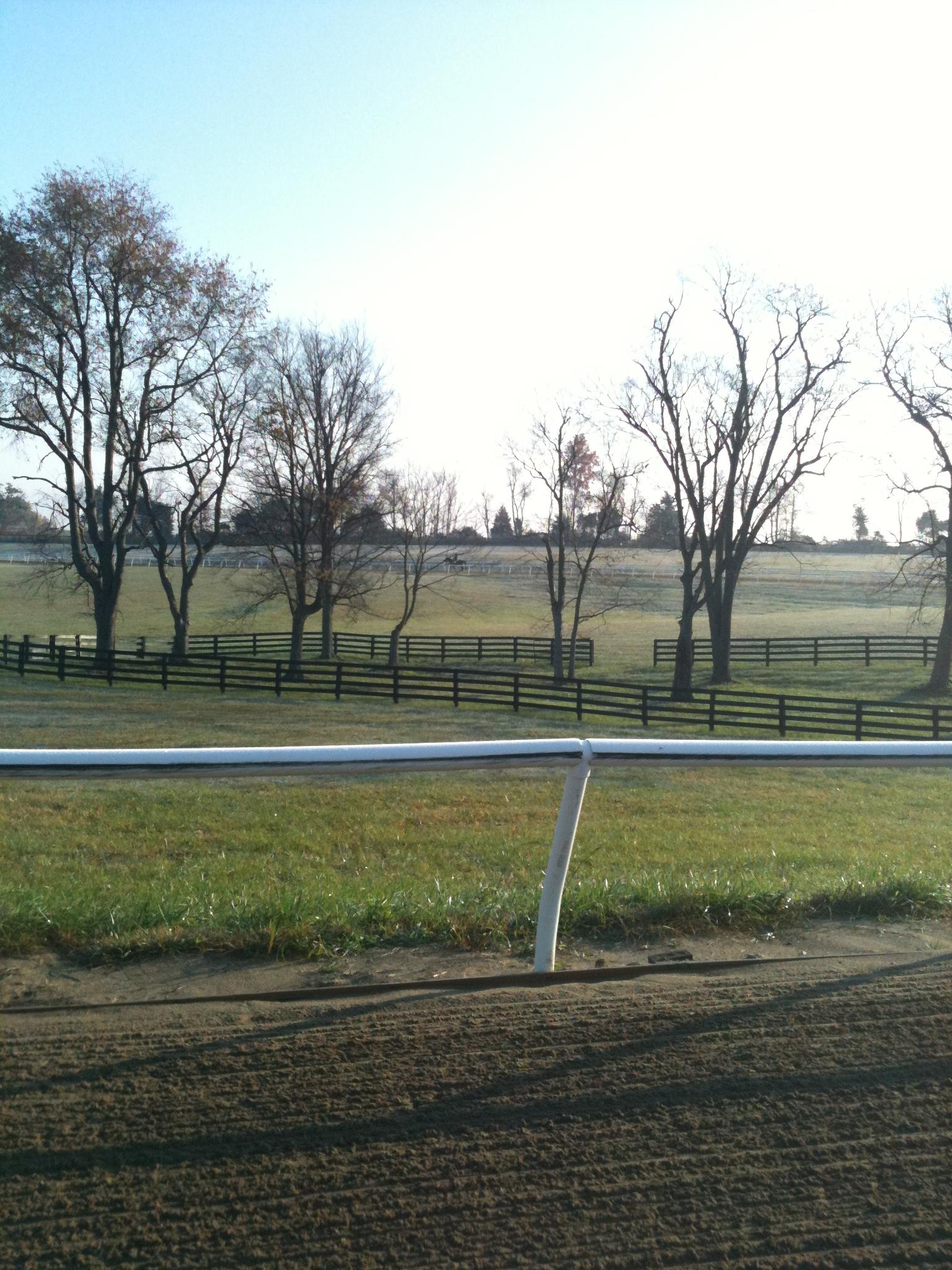 Blue Grass Equine Training Center