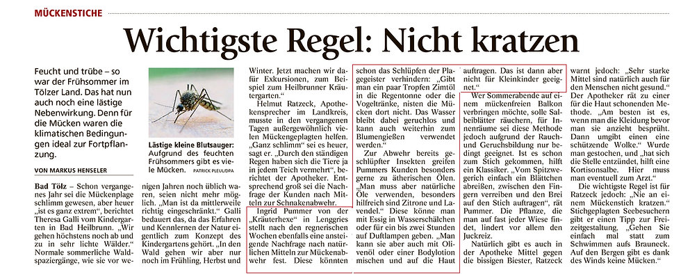 Presseartikel Kräuterhexe Sommer 2016