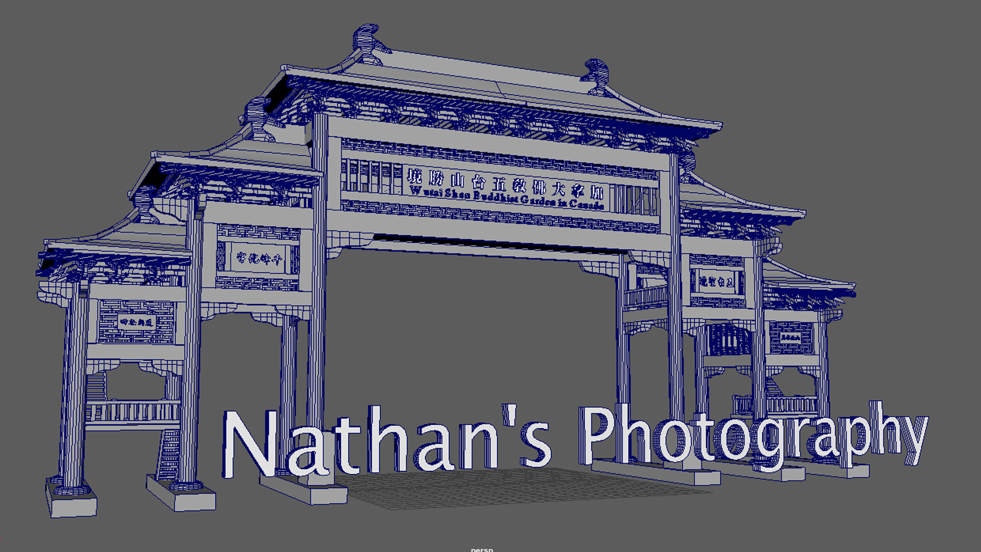 Nathan's Photography