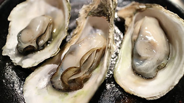oyster-989182_960_720.jpg