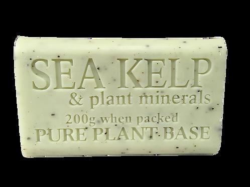 Sea Kelp & Colloidal Mineral Pure Plant Oil Soap 200gm
