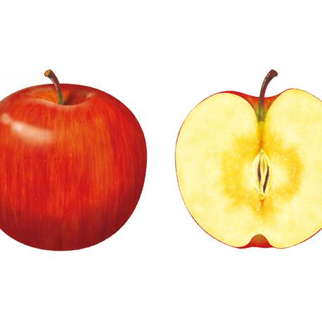 北信濃のりんご