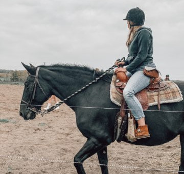 Leasing a horse