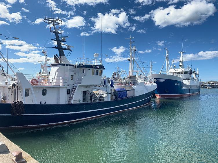 Fiskebåtar_i_Fiskebäck.jpg