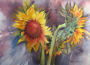 Gaye McConnell - Sunflowers