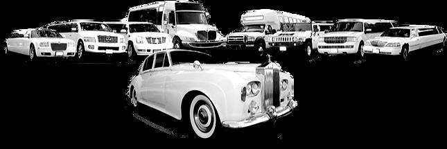 Limo Rentals Limousine Service