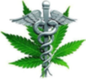 Canabis leaf with medical insignia