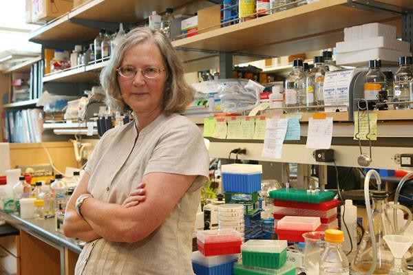 Elizabeth Blackburn, biologa molecolare, in laboratorio