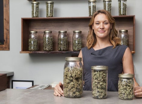 MI Cannabis Industry Set For Explosive Growth