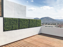 Muro Verde para Exterior