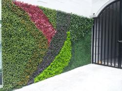 Muros Verdes con Diseño