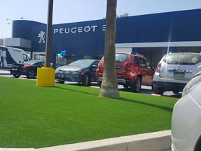 Peugeot en Tijuana