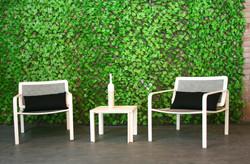 Muros verdes en jardines
