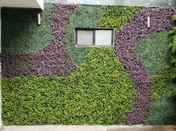 Diseño_de_muros_verdes_con_follaje_sinté