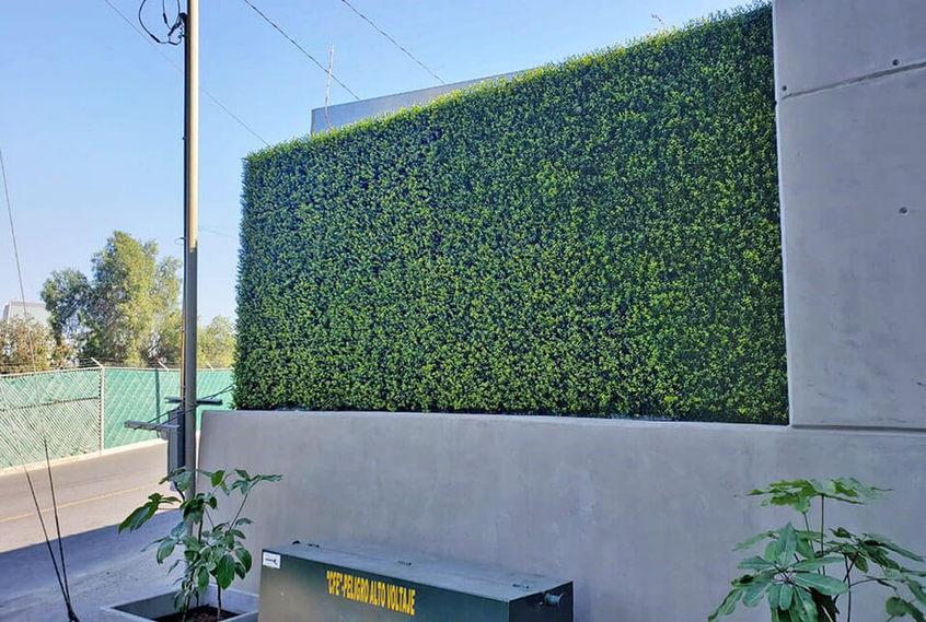 Muro verde para fachada.jpg