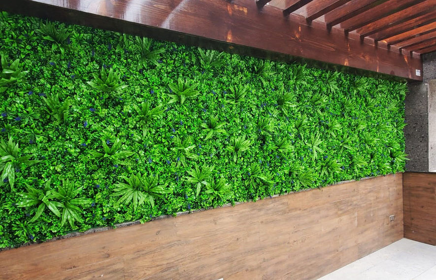 muros verdes para restaurante Tijuana.jp