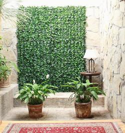 Muro Verde en Interior.