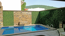 Muro Verde en Albercas