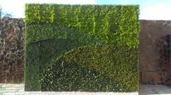 Muros_Verdes-Tijuana-Jardín_de_Eventos,_