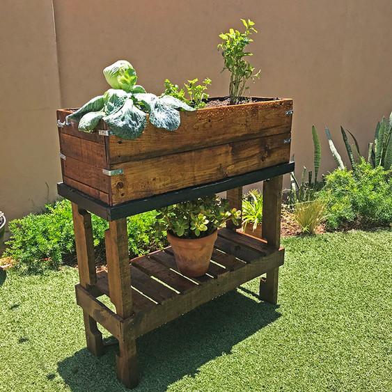 Huerto de dream gardens.JPG