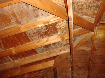 Attic Before.jpg