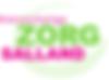 Kleinschalige-Zorg-Salland-300x221.png