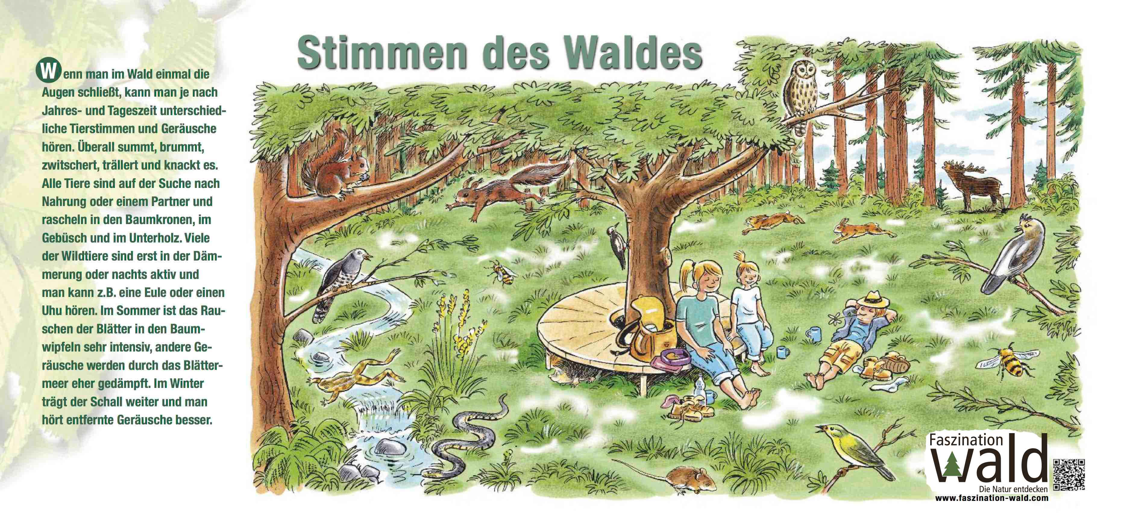 Stimmen des Waldes