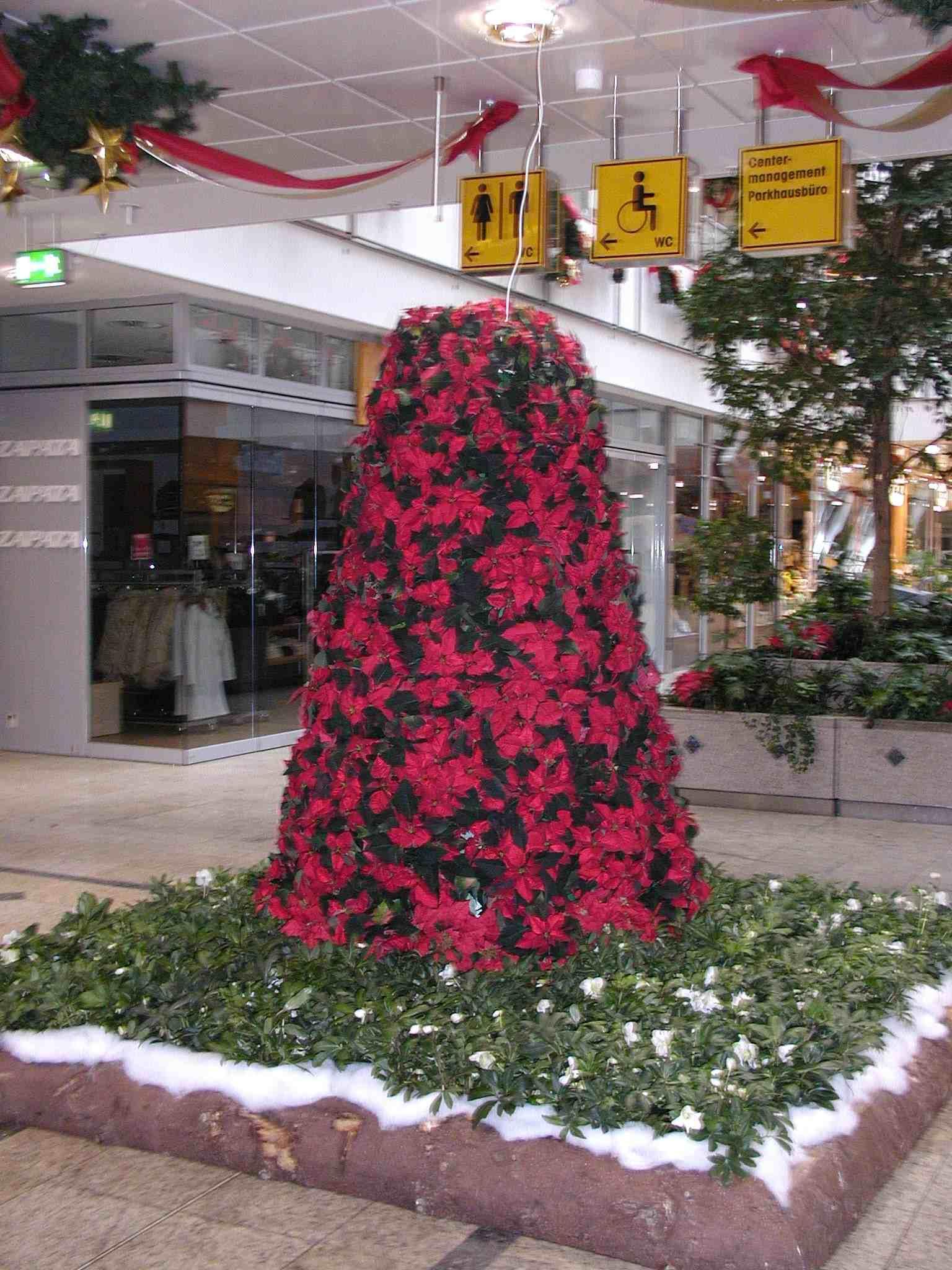 Weihnachtsternpyramide