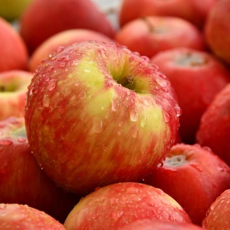 りんごの唄