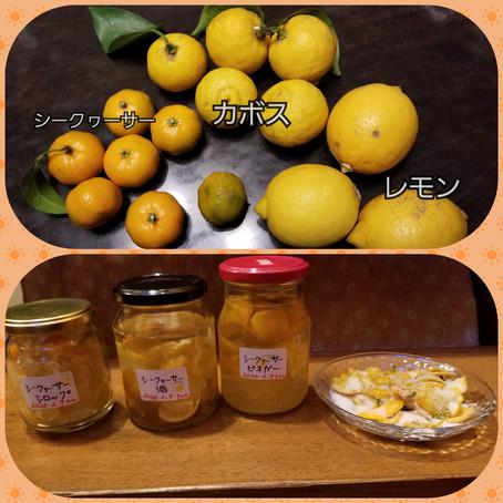柑橘満載!