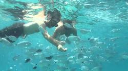 postoj na nurkowanie