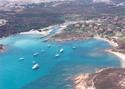 corallina porto