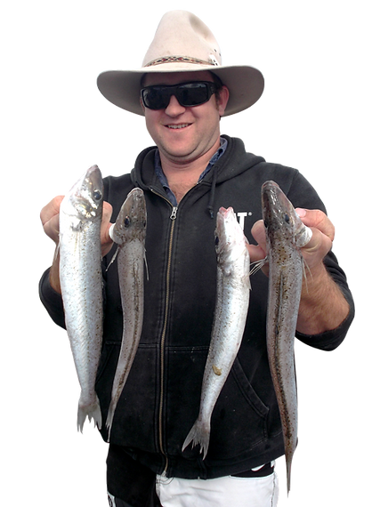 Port Hughes Fishing Charter Whiting