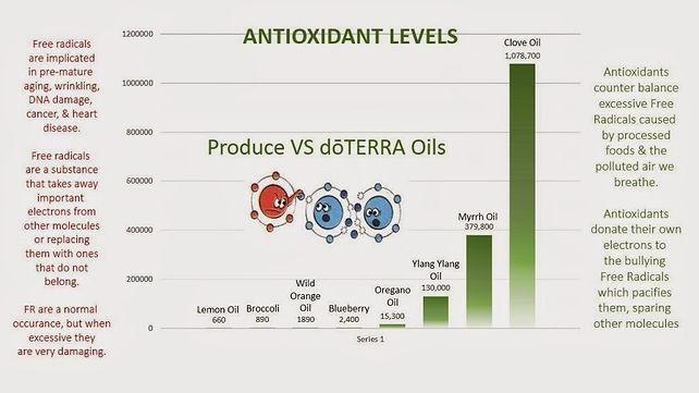 67327-antioxidants-1024x576.jpg
