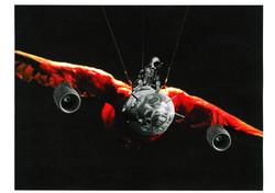 Red Parot Plane