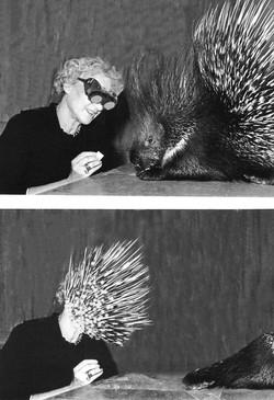 """Feeding a Porcupine"""