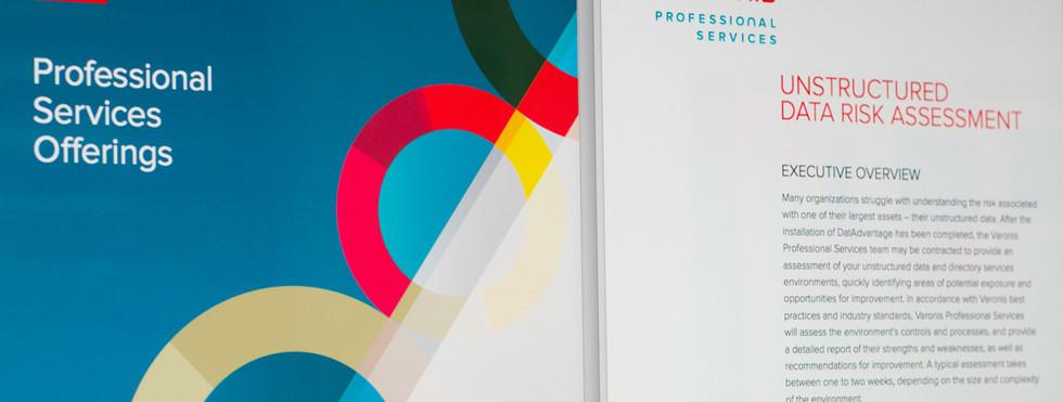 Varonis Professional Services