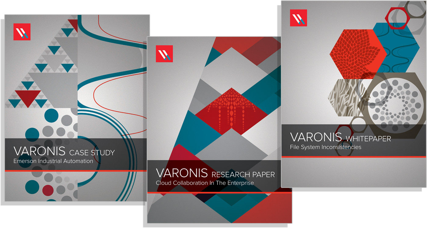 Varonis Papers 2013
