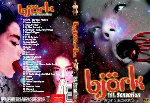 Bjork Music Video DVD 1st. Sensation