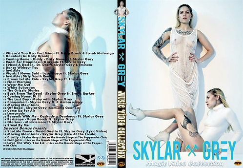 Skylar Grey Music Video DVD