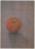 161112赤木範陸新作展.png