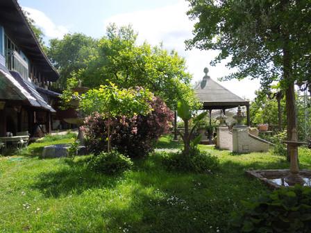 Il giardino di S. Sebastiano a Capena, costruito da Rosina nel corso degli ultimi 30 anni, dove ospitiamo eventi, mostre, concerti, feste...
