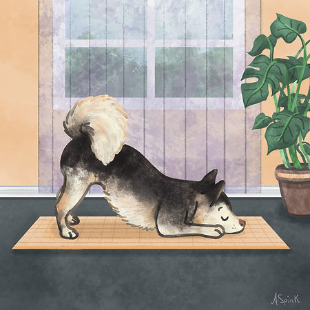 Colourful Illustration of a husky dog character doing yoga for the Daily Doggy Doodle Series.