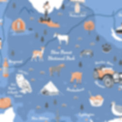 Illustrated map of the New Forest