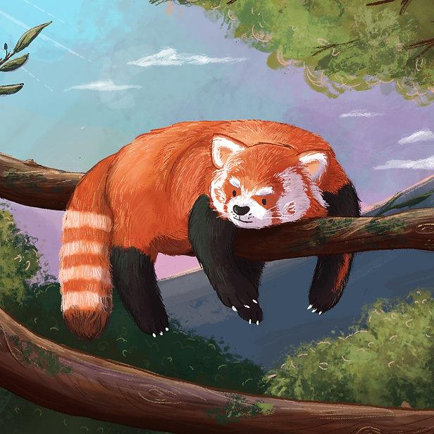 Cute Digital Children's Illustration of a Grumpy Red Panda in a tree